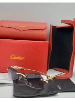 Cartier black shade sunglasses